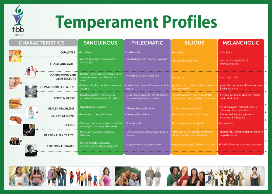 identifying temperament - Tibb Temperament Profiles - Identifying temperament